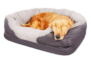 Pet Deluxe Dog and Puppy Bed, Grooved Orthopedic Foam Beds