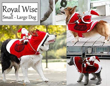 Royalwise RW03-RD-XL Royal Wise Running Santa Christmas Pet Costumes, Apparel Party Dressing Up